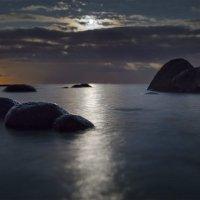 Залив... Ночь... Луна.... :: Николай Т