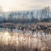 пейзаж :: S. Basov