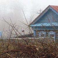 Утро туманное :: Ольга Алеева