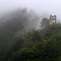 Мозельская долина туманным утром. :: Николай Карандашев