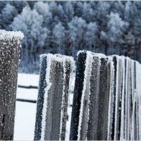 Изморось :: Arcadii Mayrhofen