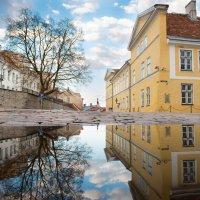 Вечерняя прогулка по Таллину :: Юрий Никитин