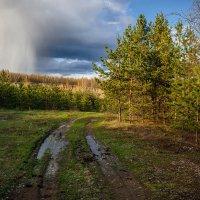 Апрельские дожди... :: Влад Никишин