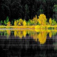 Вечер на Ковжском озере :: Валерий Талашов