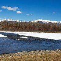 Реки Сибири. Река Зун-Мурино :: Анатолий Иргл
