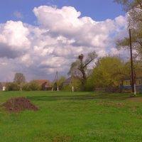 Весна в селе. :: Татьяна Черняева