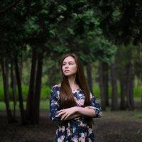В чаще леса :: Дарья Накрайникова