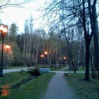 Сумерки в  Измайловском парке. :: Larisa Ereshchenko