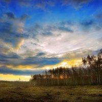 Апрельский рассвет...4 :: Андрей Войцехов