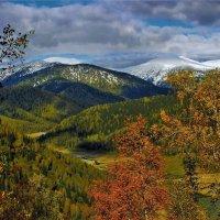 Первый визит зимы :: Сергей Чиняев