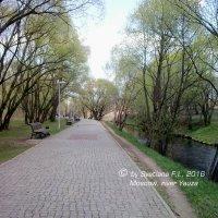 Москва, р. Яуза :: Светлана FI