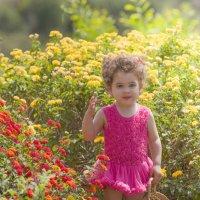 Цветок в цветах :: Ольга