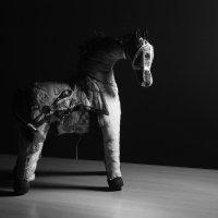 Лошадь Трамантана :: Максим Зародов