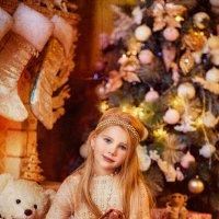 Новогодняя сказка :: Marina Barulina