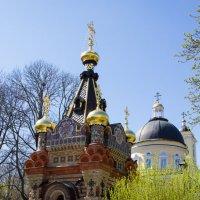 Весна       Парк :: Иван Шпак