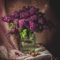 Сиреневый цвет :: Елена Деева