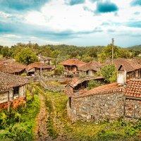 Деревня Бръшлян :: Марина Протасова