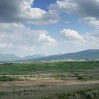 Тайган :: Роман Ткаченко