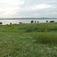 Озеро Шира ранним утром :: Галина
