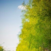 Весна :: Anabel A