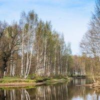 Весна пришла :: Виталий