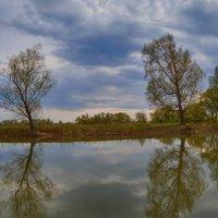 Вечерняя панорама у Иртыша. :: Виктор Гришенков