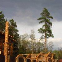Люди строятся :: Андрей Лукьянов