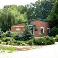 Ботанический сад :: Вера Щукина
