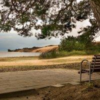 На тихом берегу :: Виталий Латышонок