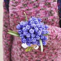 ...синие цветы... :: Ольга Нарышкова