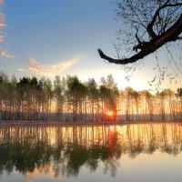 Рассветное воссоединение...2 :: Андрей Войцехов
