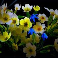 Букет от  весны... :: Юрий