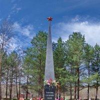 Роща памяти :: Валерий Талашов