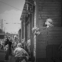 Маленький солдат :: Olga Zhukova