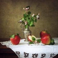 Майские яблоки :: Ирина Приходько