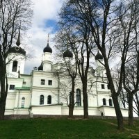 Псковщина. Монастырь :: Наталья