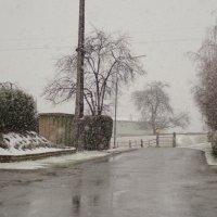 Снег, снег, снег. :: Andrad59 -----