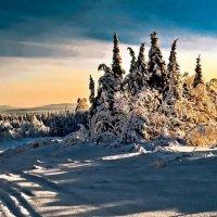 Зимнее утро. :: Владимир Батурин