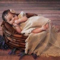 Крошка :: Анна Кулешова