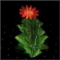 цветочек аленький :: linnud