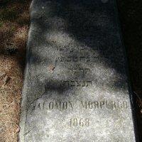 На старом еврейском кладбище :: Марина Домосилецкая