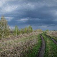 Перед грозой :: Алексей Вольтов