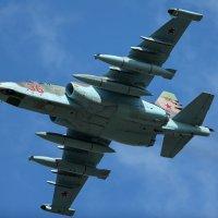 Су-25. Близко стоять, только пузо и видать... )) :: Павел Myth Буканов
