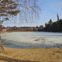 Так начиналась весна :: Лидия (naum.lidiya)