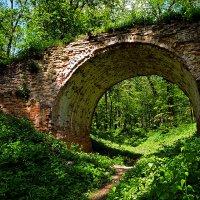Забытые ворота в рай ..? :: Александр Бойко