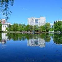 Май. Озеро в городском парке. :: Наталья Тагирова