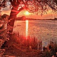 уходящее солнце.. :: юрий иванов