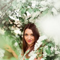 Черемуха в цвету... :: Даша Хмелева