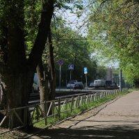 Город и природа :: Виталий Шимко