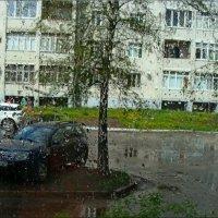 Майский дождь :: °•●Елена●•° Аникина♀